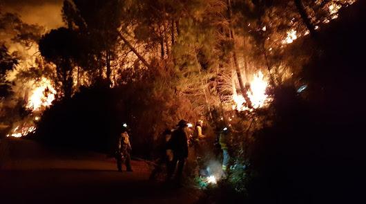 Muere un bombero de Almería de 44 años en el incendio de la sierra malagueña