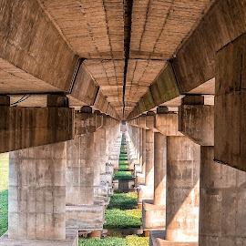 Seeing all life in perfect symmetry.  Perceiving each day with righteous clarity.  Living each moment in purposed reality.  Believing each day is the start of eternity. by Mitul Gajera - Buildings & Architecture Bridges & Suspended Structures ( #bridge #architecture #symmetrical #, #shotonmia1 #structure )