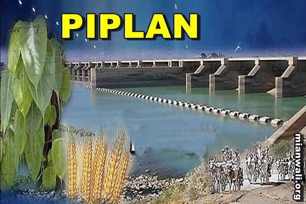 PIPLAN