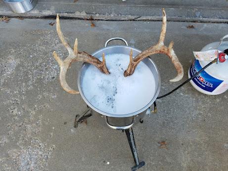 skull boil | Rokslide Forum