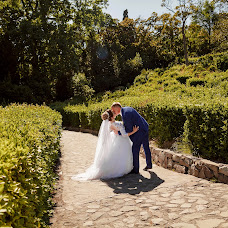 Wedding photographer Darya Deryaga (strekozza). Photo of 11.06.2018