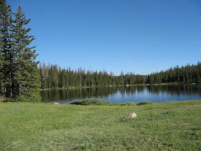 Photo: Rawah (clouds of mosquitoes at lake)