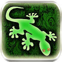 Gecko photo image editor icon