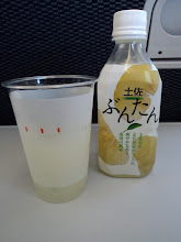 Photo: Had this special citrus drink for 300 yen. It was delish.