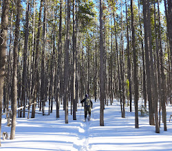 Photo: We followed the CDT. If you do this hike in the winter you must have a GPS device that shows the trail and exactly where you are on that trail.