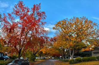 Photo: Los Altos in Autumn
