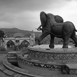 Elephant Village by Mulawardi Sutanto - Black & White Street & Candid ( kampung gajah, park, lembang, travel, bandung )