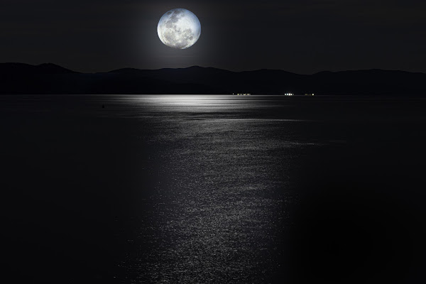 blue Moon di Senzuno