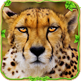 Wild Cheetah Adventure Sim ? apk