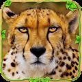 Wild Cheetah Adventure Sim ?