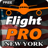 Pro Flight Simulator NY Free