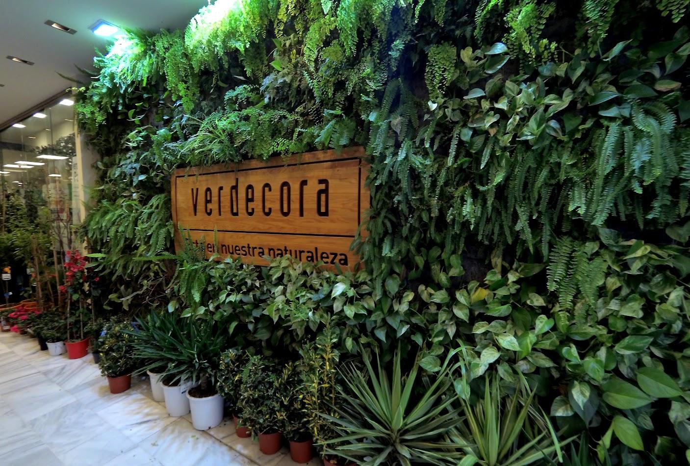 Jard n vertical de interior en valencia singulargreen - Jardines verticales de interior ...
