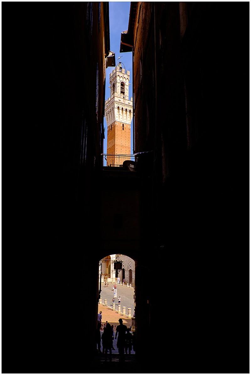 Torre dei Mangia di Ernesto Uccelli