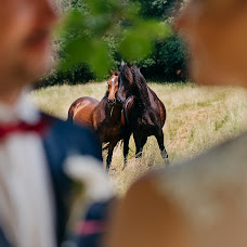 Hochzeitsfotograf Alexander Hasenkamp (alexanderhasen). Foto vom 11.06.2018