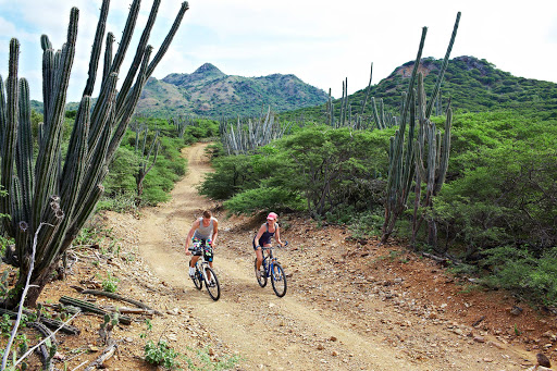 bonaire-mountain-biking.jpg - Active travelers can opt to explore Bonaire's terrain on mountain bikes.