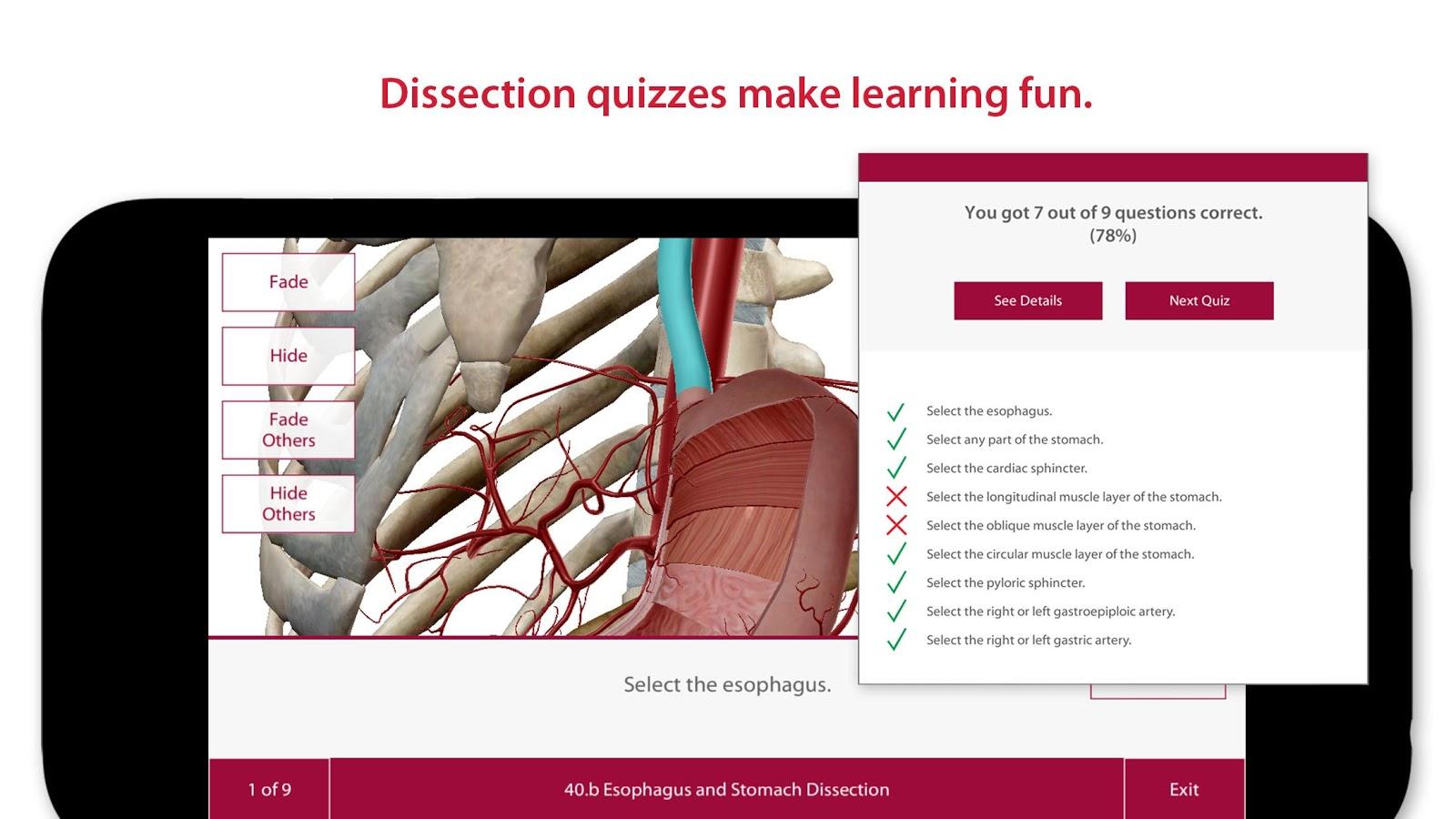 Google anatomy app 5868114 - follow4more.info
