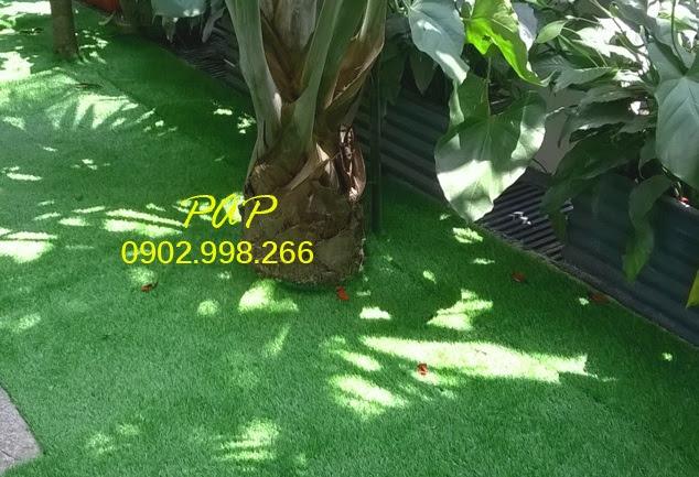 Lý do tự nhiên mà Thảm sân vườn được dùng thịnh hành đến thế