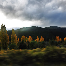 The world  from a bus window by My 1st Impressions - Landscapes Travel ( bus, window, autumn, patagonia, yellow, landscape )
