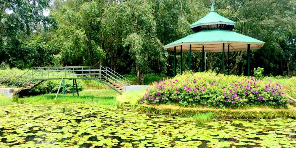 travelogged-21-things-to-do-munnar-blossom-hydel-park_image