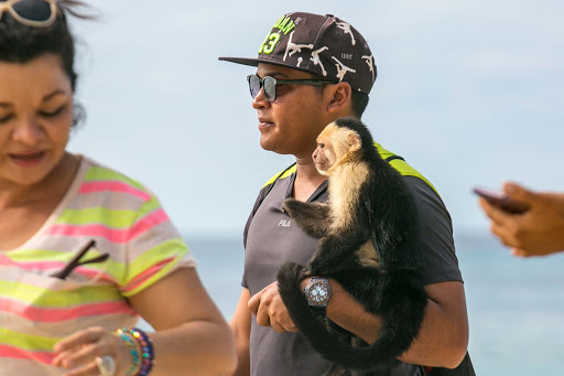 A capuchin monkey and its owner walk the beach on Roatan Island, Honduras.