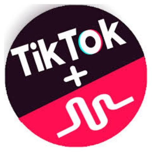 TikTok  includes  Musical.ly  filters  guide cheat hacks