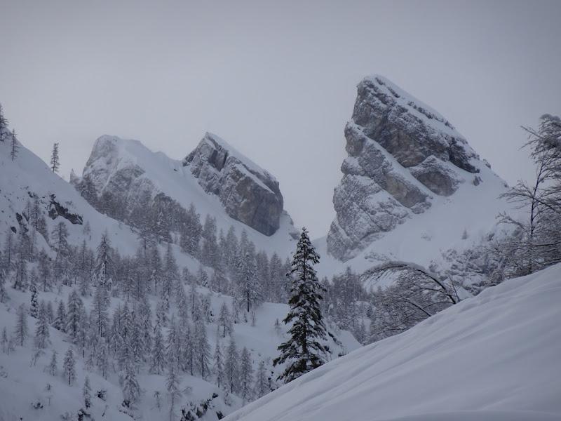 Monte Cornon di daniela_lanfredi