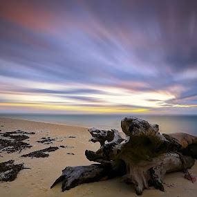 by Vince Chong - Landscapes Sunsets & Sunrises
