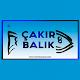 Download Çakır Balık For PC Windows and Mac
