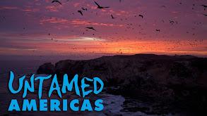Untamed Americas thumbnail