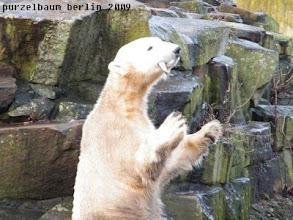 Photo: Das Fischlein wurde sicher erwischt :-)
