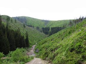 Photo: 14.Koło tego szałasu szlak opuszcza wygodną drogę i zaczyna się darcie w górę w kierunku przełęczy.