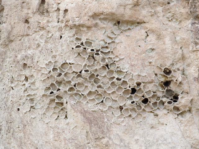 Ruined swallows' nests