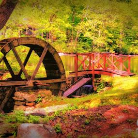 Country Water Wheel by Richard Moyen - Nature Up Close Water ( water, wheel, tree, nature, rhode island, bridge, woods, country )