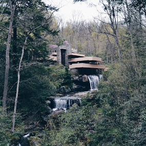Fallingwater house by Valentina Cantera - Buildings & Architecture Homes ( harmony, balconies, wright, water fall, fallingwater house, organic architecture, spring, horizontal, modern architecture, wood, mill run, landmark, flow, cave, cascade, concrete slab, tree, cantilevered, water, american architecture, pennsylvania, frank lloyd wright, museum, integration, concrete, stone wall, steel, forest, extension, architect, weekend home, house, rock, waterfall, terrace, cherokee red, architecture, stonework, fallingwater, monolithic, nature, kaufmann, light ochre, home, stone, outdoor, hill, national historic landmark, natural surrounding, dynamism, bear run, falling water )