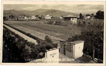 Photo: Karşıyaka Orman Fidanlığı