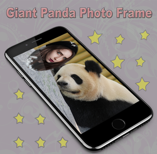 Giant Panda Photo Frame 1.1 screenshots 2