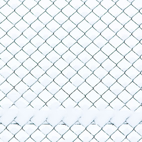 Fence by Adrijan Pregelj - Abstract Patterns ( fence, winter, cold, snow, white )