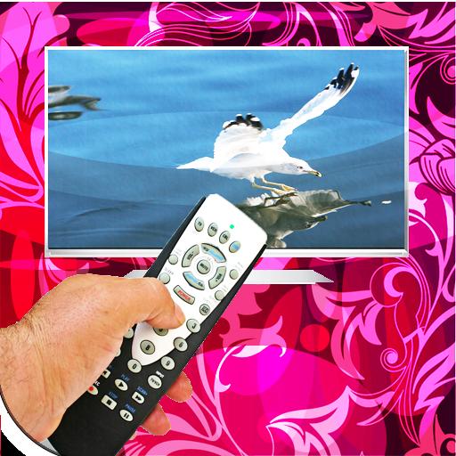 Universal Remote,TV Remote,Pro 2 23 Apk Download - remotetv