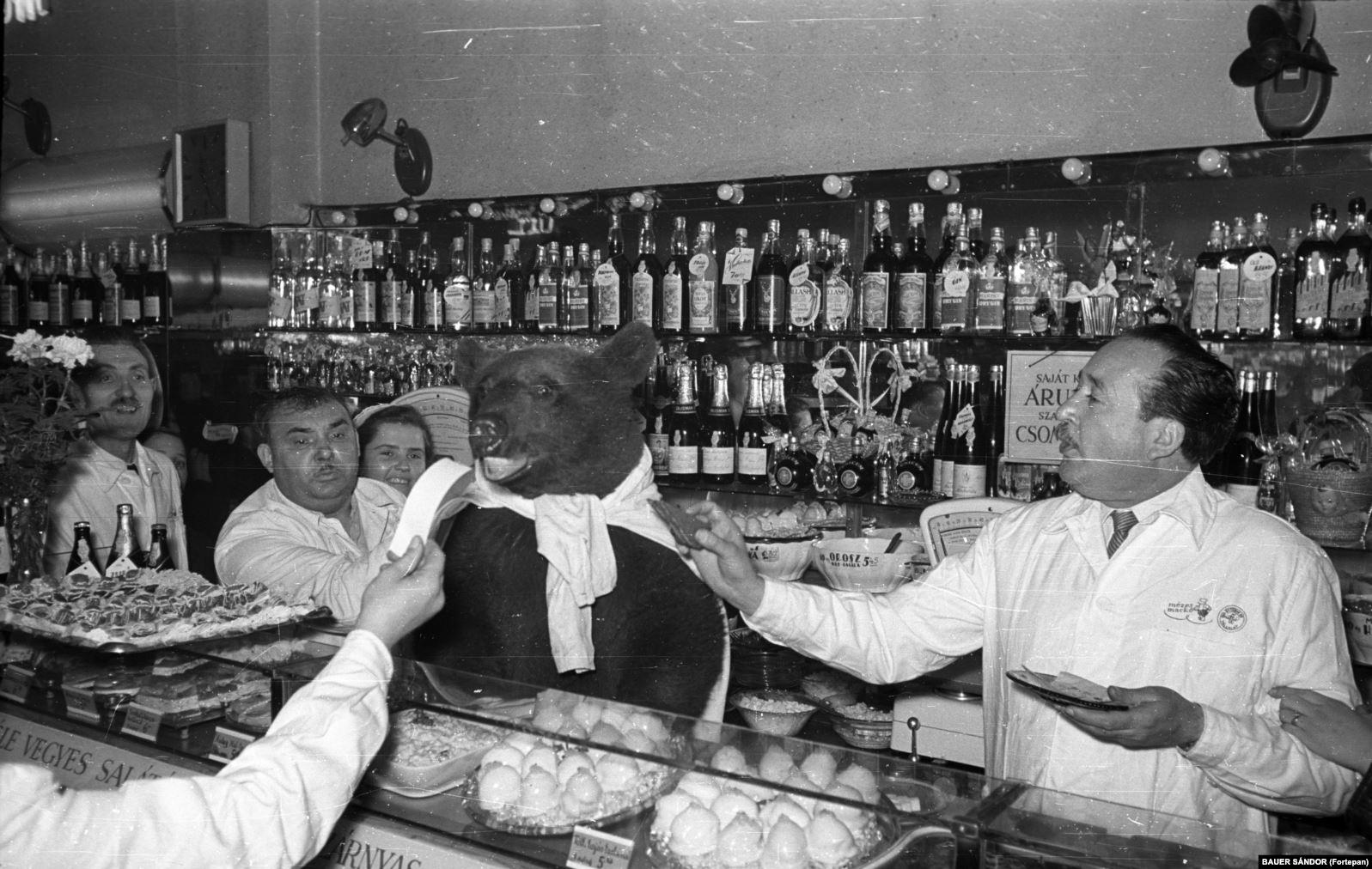 Медведь за стойкой популярного магазина деликатесов и кулинарии. 1960 год. Сообщалось, что медведя позаимствовали в местном зоопарке для празднования юбилея заведения и что он все в нем попробовал