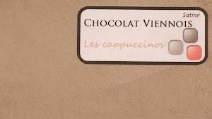 nuancier-les-betons-de-clara-beton-cire-chocolat-viennois-collection-les-cappucinos-decoration-interieure-enduit-decoratif.jpg