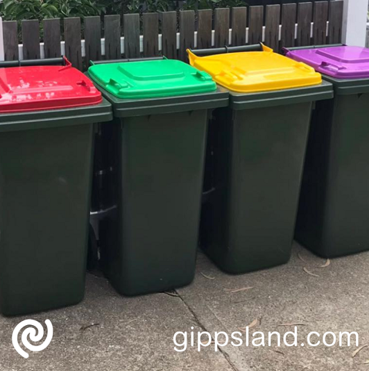 The rollout of the new bins will start next year and happen gradually – informed by the needs of local communities and existing council contracts, there will also be special arrangements for remote regional households and people in apartments, to ensure everyone gets access to the new four-bin system
