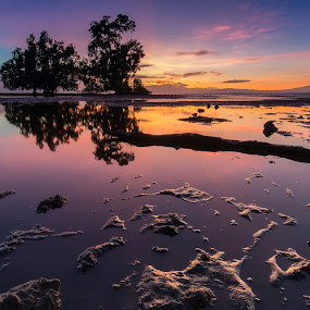 The Low Tide Effect by Raffy Nadayag - Landscapes Sunsets & Sunrises ( sky, sunrise, seascape, reflection, yellow, dramatic, morning hue, water, driftwood,  )