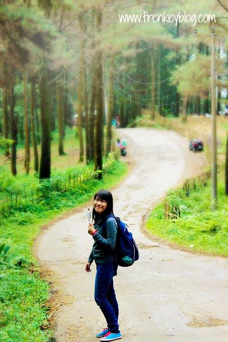 Jalanan di Hutan Pinus Gunung Pancar