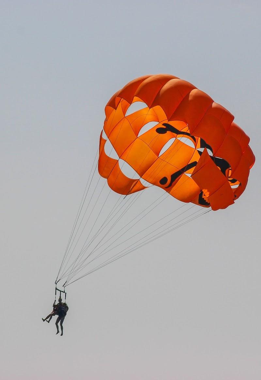 Orange Fly di Eduard