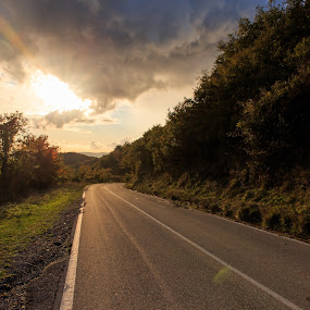 by Ricky Papex - Landscapes Sunsets & Sunrises ( toscana, italia, strada, orizzontale, autunno, fall, acquerino, foglie, paesaggio )