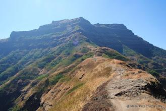 Photo: Torana from Ridge