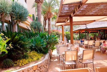 Mallorca: Zafiro Tropic****