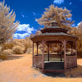 The Gazebo by Angel Escalante - Landscapes Prairies, Meadows & Fields