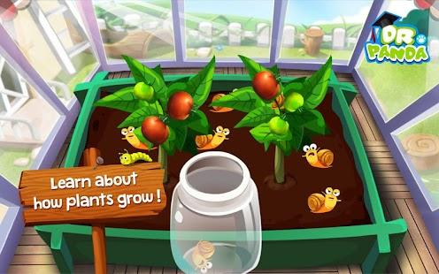 Dr. Panda's Veggie Garden- screenshot thumbnail