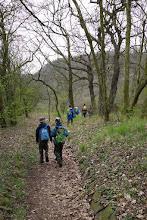 Photo: Příjemnou lestní cestou se jdeme podívat na další vyhlídku.